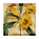 Vibrant Floral V