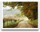 Autumn On A Country Road
