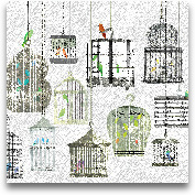 Birdcages Collage Sq...<span>Birdcages Collage Square II - 18x18</span>