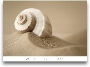MYTHIC BEACH I