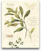 Aromatique IV