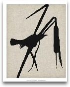 Audubon Silhouette II