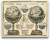Antique Globes - 28x22