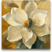 Magnolias Aglow At S...<span>Magnolias Aglow At Sunset I (detail)</span>