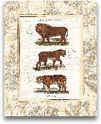 African Animals IV -...<span>African Animals IV - 16x20</span>