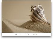 MYTHIC BEACH II