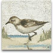 Beach Bird IV - 8x8