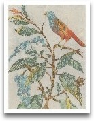 Aviary Collage II
