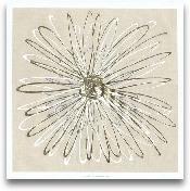 Atomic Flower I
