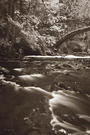 Whatcom Creek - 24x36